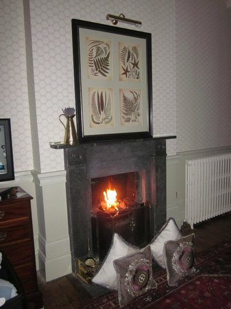 Moy House: A lovely fire in the fireplace--what a pleasure