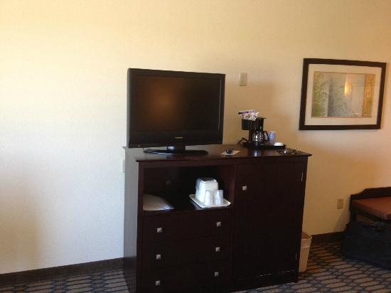 Holiday Inn Express Hotel & Suites Andalusia: TV