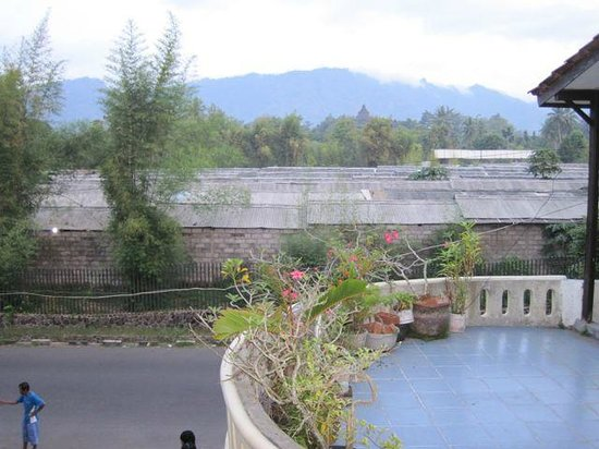 Lotus Guest House: View from our room to the tip of Borobudur across the street