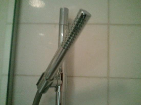 O Hotel: The famous shower wand!