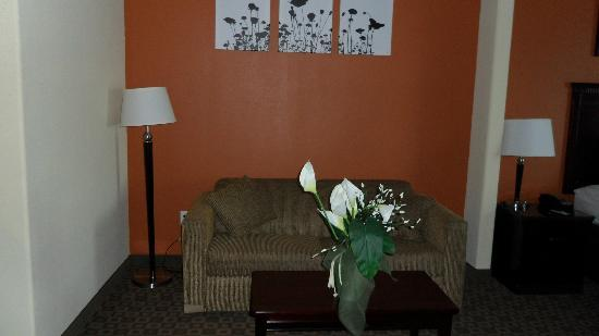 Sleep Inn & Suites Hwy 290 / NW Freeway: Room's Sitting Area