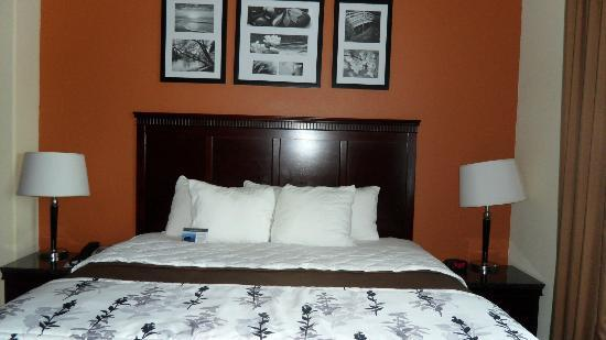 Sleep Inn & Suites Hwy 290 / NW Freeway: King-sized Bed