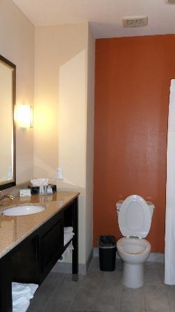 Sleep Inn & Suites Hwy 290/NW Freeway: Bathroom