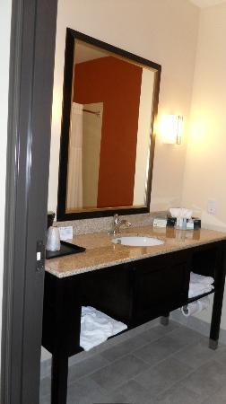 Sleep Inn & Suites Hwy 290 / NW Freeway: Bathroom