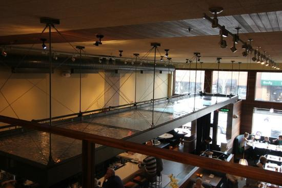 Five Fusion & Sushi Bar : View from upstairs seating.