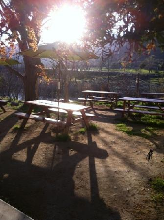 Sierra Subs and Salads: seating overlooking the river