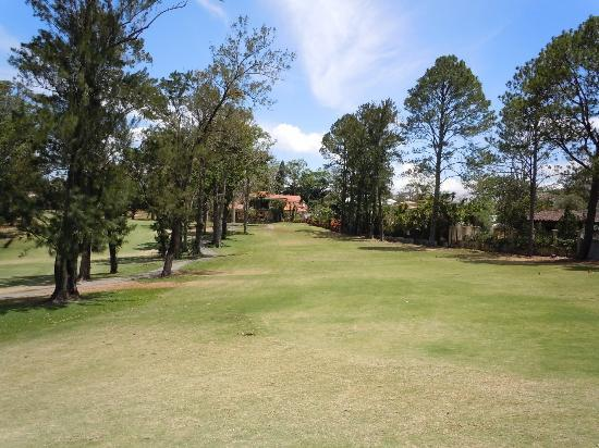 Melia Cariari Golf Course: View from the green back to the T-box, on the 172 yards par-3 17th hole