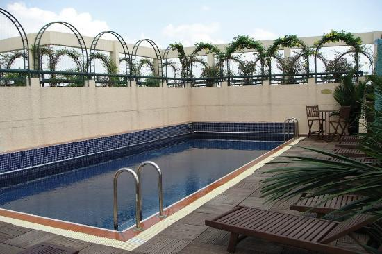 Windsor Plaza Hotel: Бассейн на крыше