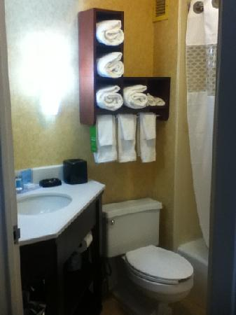 Hampton Inn Columbia-I-26 Airport: nice