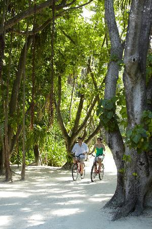 Shangri-La's Villingili Resort and Spa Maldives: Cycle in lush vegetation with 17,000 coconut trees and ancient banyan trees