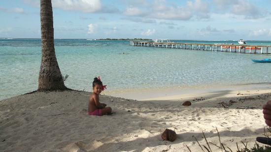 Hotel Les Tipaniers: La plage