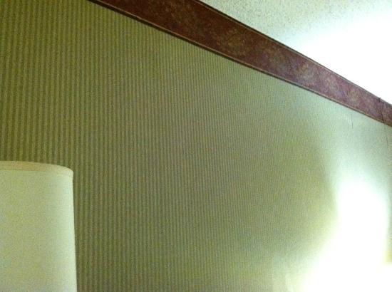 Louisville Airport/Expo Hotel: Bulging behind wall paper