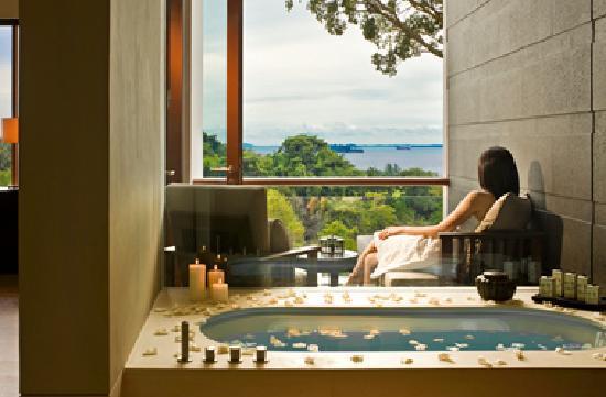 Capella Singapore: Premier Rooms
