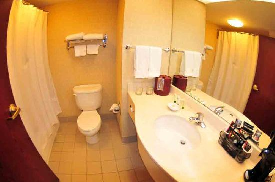 Nathan Hale Inn and Conference Center : Bathroom
