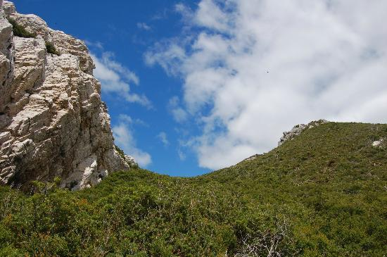 Rocky Cape National Park: This shows the rugged nature of the park