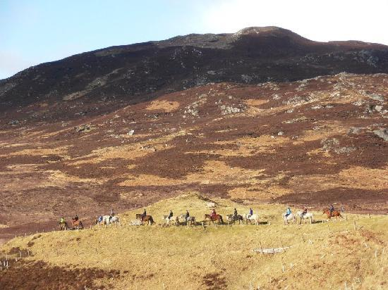 Newtonmore Riding Centre : Trekking up Glen Banchor