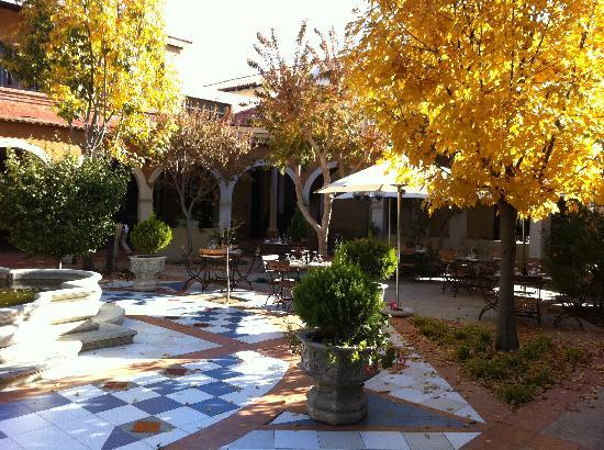 The Stellenbosch Wine Bar and Bistro: Our Courtyard starting to share its colours
