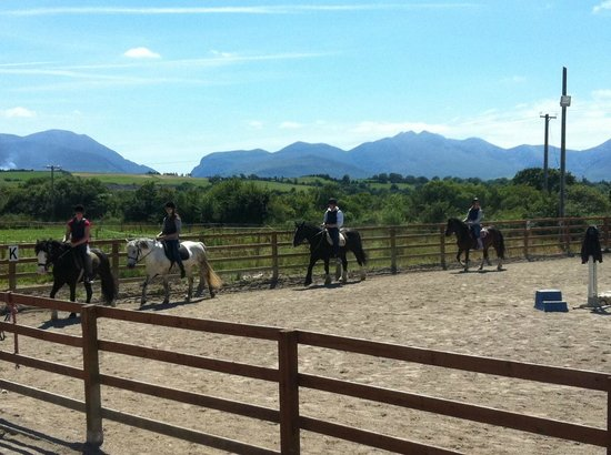 Pony Tales Stables: Lesson