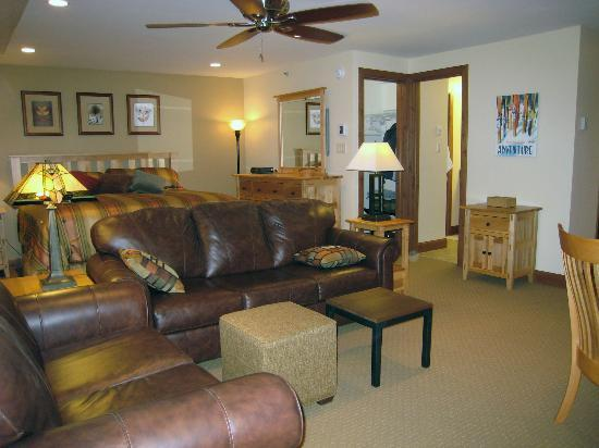 Lichenhearth Condominiums: Living Area
