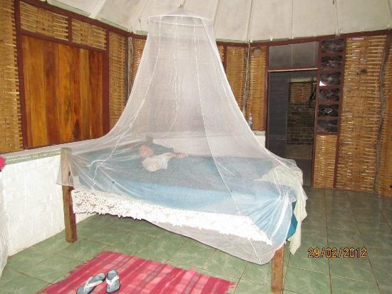 Yerba Buena Guest Cabins: Seaside Room