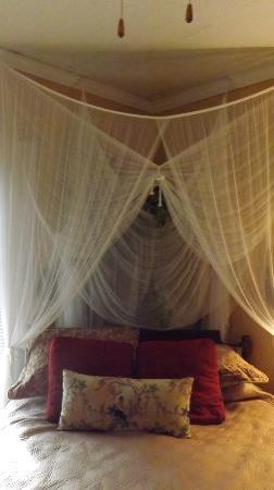 The Old Carrabelle Hotel: lovely corner bedroom with view