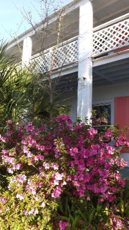 The Old Carrabelle Hotel: exterior view of the Inn