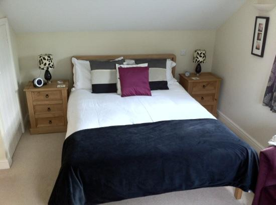 Pandy Isaf Country House Bed & Breakfast: double room at Pandy Isaf