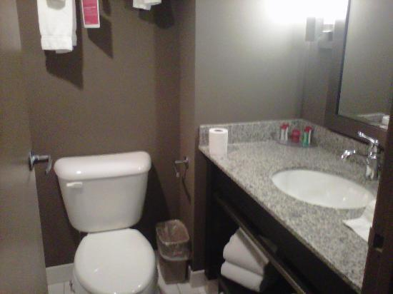 Ramada Plaza Niagara Falls: bathroom