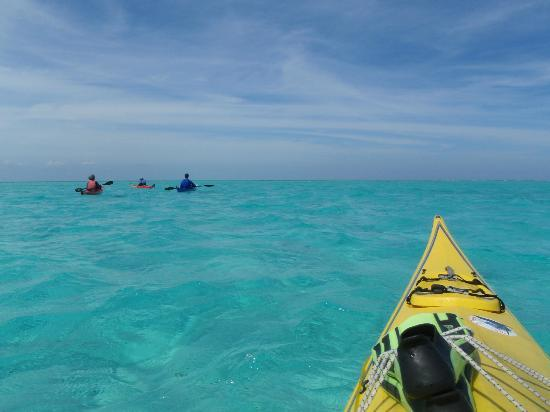 Long Caye Resort: Just a typical kayak snorkel