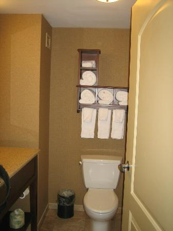 Hampton Inn & Suites St. Louis/South I-55: Towel rack