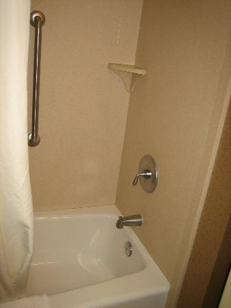 Hampton Inn & Suites St. Louis/South I-55: Tub