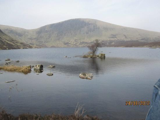 Annandale Arms Hotel: This is a Loch a short drive from the Annandale, Its a lovely walk u have to take to get up to i