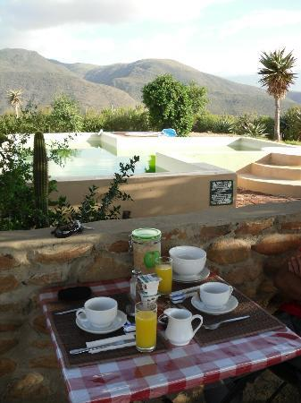 Le Petit Karoo Ranch: breakfast by the pool