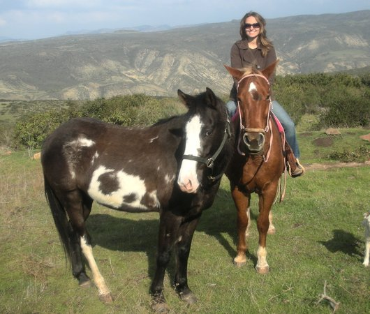 All the Pretty Horses of Baja - Rescue and Rides
