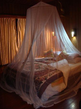 Paramount Inle Resort : Hay una gran mosquitera