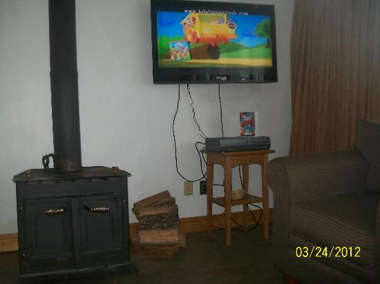 The Inn at Fall Creek Falls State Park: Flat screen t.v. next to the wood burning stove