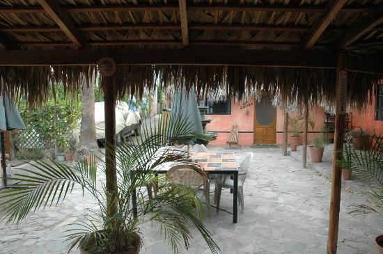 Iguana Inn: View from door of my room #3