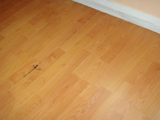 Oceania Properties : One area of damaged floor from water damage. Floor had multiple areas of buckeling and lifting.
