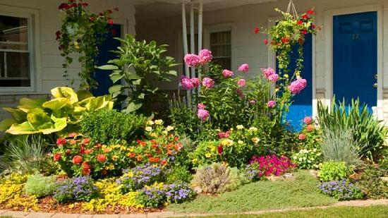 Dell Creek Motel: Garden