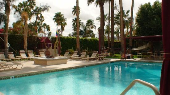 Desert Paradise Gay Men's Resort: Pool area