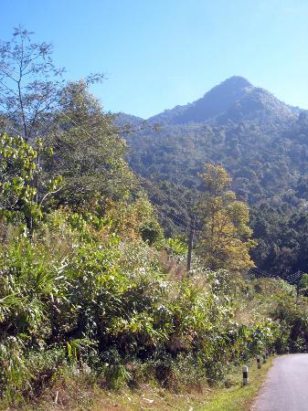 Doi Phu Kha National Park: View to the south of the mountain, Doi Phukha, I think