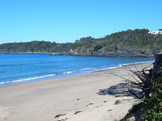 Smugglers on the Beach: Korora Beach