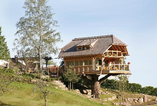 Baiersbronn, Germany: Sauna im Baumhaus