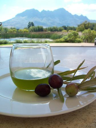 Morgenster Wine Farm: Olive oils