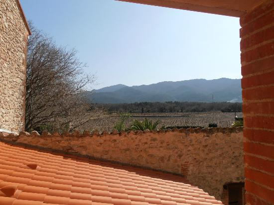 Auberge du Roua : view over vineyard
