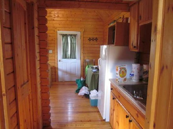 Gander Island Cabins: View from the bedroom