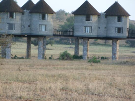 Sarova Salt Lick Game Lodge: Lodge