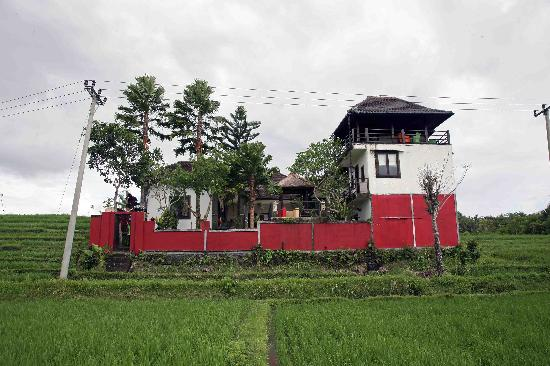 Balam Bali Villa: Villa Rear