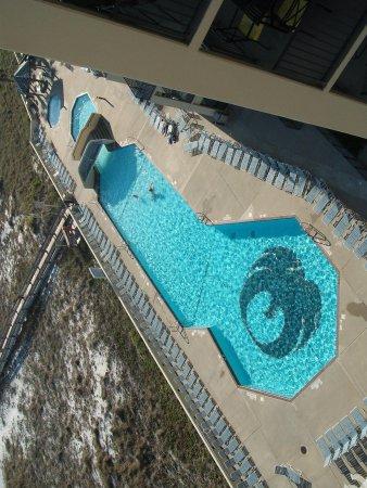Phoenix Condominiums: pool showing phoenix on bottom of pool