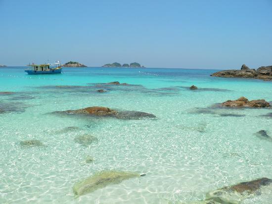 Coral Redang Island Resort: Mare